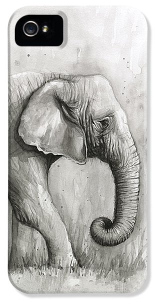 Elephant iPhone 5s Case - Elephant Watercolor by Olga Shvartsur