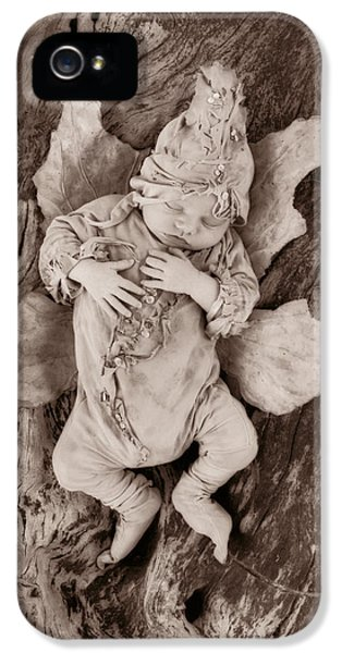 Fairy iPhone 5s Case - Driftwood Fairy by Anne Geddes