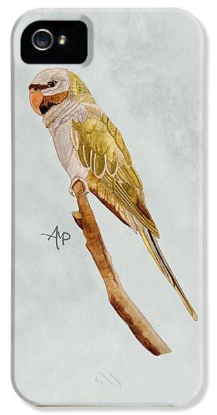 Derbyan Parakeet IPhone 5s Case
