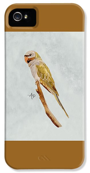 Derbyan Parakeet IPhone 5s Case by Angeles M Pomata