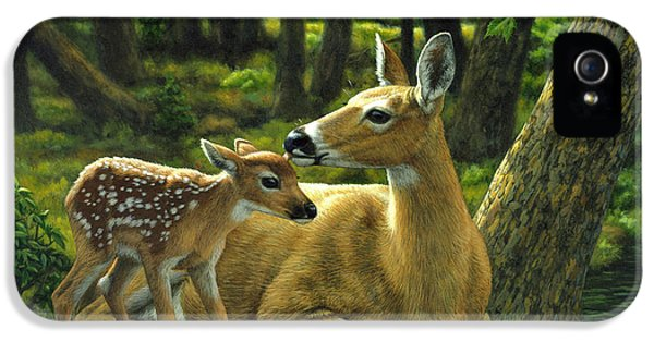 Whitetail Deer - First Spring IPhone 5s Case