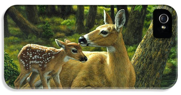 Whitetail Deer - First Spring IPhone 5s Case by Crista Forest