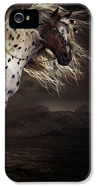 Horse iPhone 5s Case - Leopard Appalossa by Shanina Conway