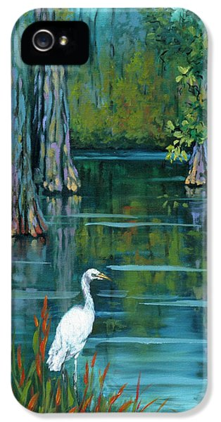 Crane iPhone 5s Case - The Fisherman by Dianne Parks