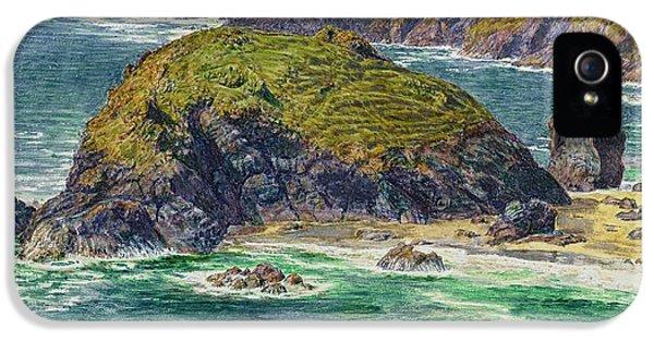 Asparagus Island IPhone 5s Case