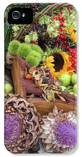 Autumn Abundance IPhone 5s Case by Tim Gainey