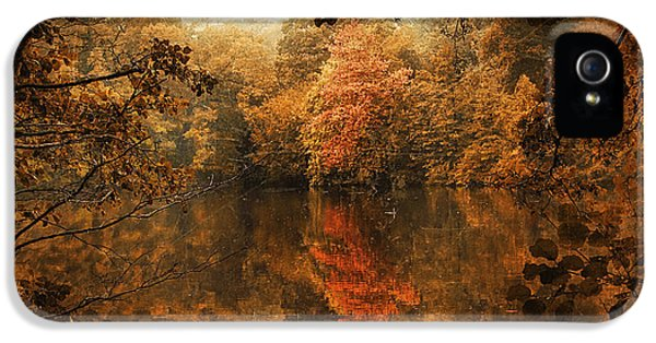 Autumn Reflected IPhone 5s Case