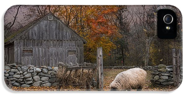 Sheep iPhone 5s Case - Autumn Sweater by Robin-Lee Vieira