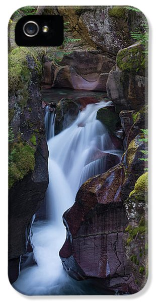 Avalanche Gorge 3 IPhone 5s Case by Gary Lengyel