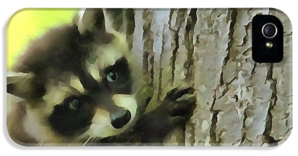 Baby Raccoon In A Tree IPhone 5s Case by Dan Sproul