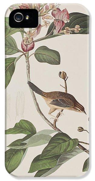 Bachmans Sparrow IPhone 5s Case by John James Audubon
