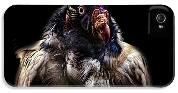 Bad Birdy IPhone 5s Case