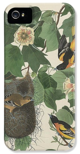 Baltimore Oriole IPhone 5s Case by Rob Dreyer