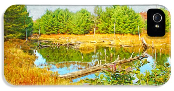 Beaver iPhone 5s Case - Beaver Pond by Laura D Young