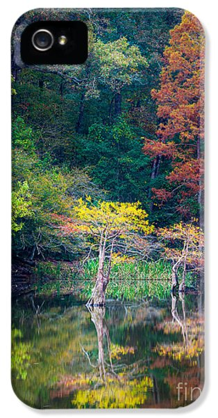 Beaver iPhone 5s Case - Beavers Bend Trees by Inge Johnsson