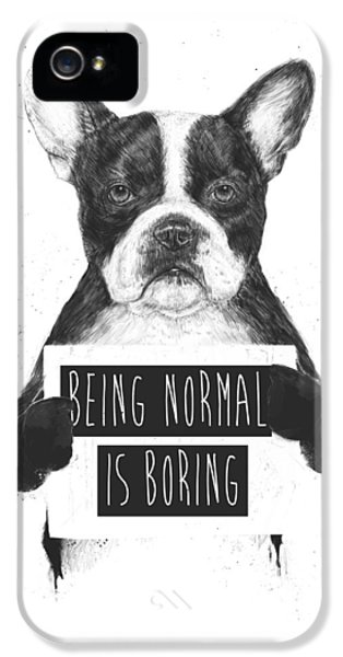 Dog iPhone 5s Case - Being Normal Is Boring by Balazs Solti