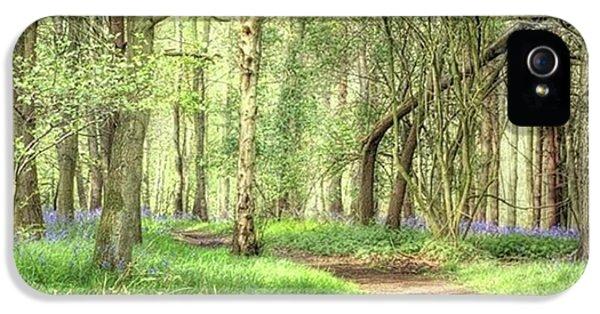 iPhone 5s Case - Bentley Woods, Warwickshire #landscape by John Edwards