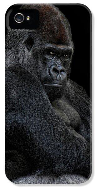 Gorilla iPhone 5s Case - Big Silverback by Joachim G Pinkawa