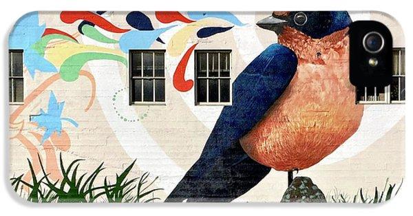 iPhone 5s Case - Bird Mural by Julie Gebhardt