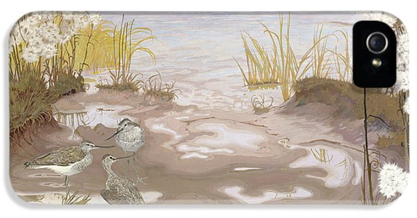 Kingfisher iPhone 5s Case - Bird On The Mud Flats Of The Elbe by Friedrich Lissmann