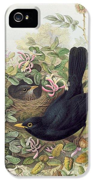 Blackbird,  IPhone 5s Case by John Gould