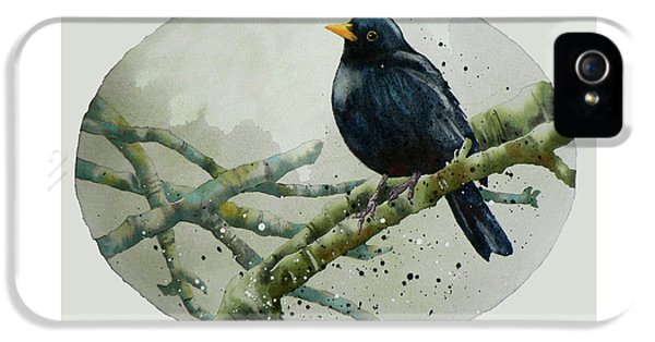 Blackbird Painting IPhone 5s Case by Alison Fennell