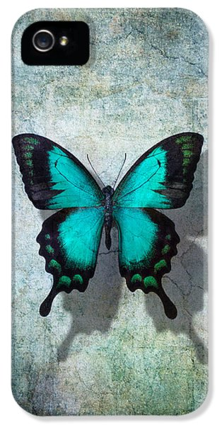 Blue Butterfly Resting IPhone 5s Case