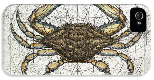 Etching iPhone 5s Case - Blue Crab by Charles Harden