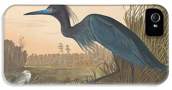 Crane iPhone 5s Case - Blue Crane Or Heron by John James Audubon