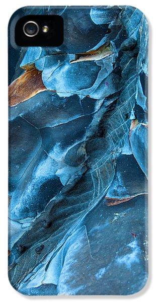 Macro iPhone 5s Case - Blue Pattern 1 by Jonathan Nguyen