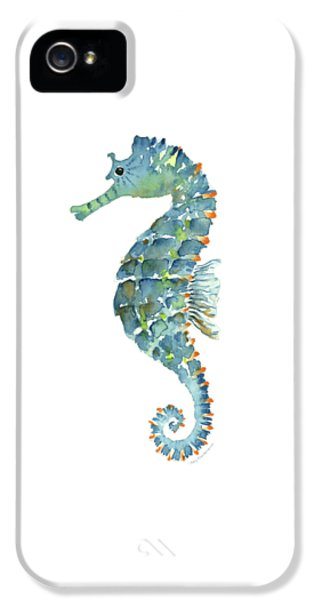 Blue Seahorse IPhone 5s Case by Amy Kirkpatrick