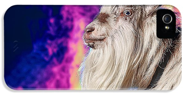 Blue The Goat In Fog IPhone 5s Case by TC Morgan