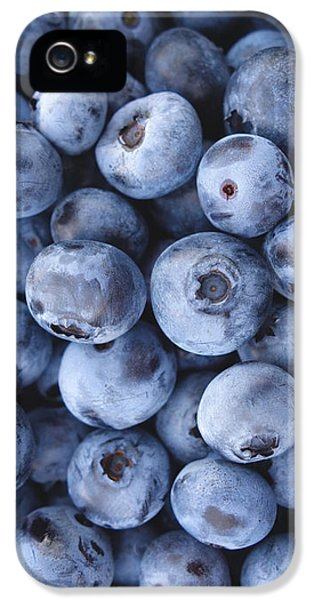 Blueberries Foodie Phone Case IPhone 5s Case by Edward Fielding