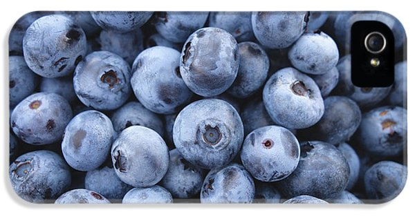 Blueberries IPhone 5s Case by Happy Home Artistry