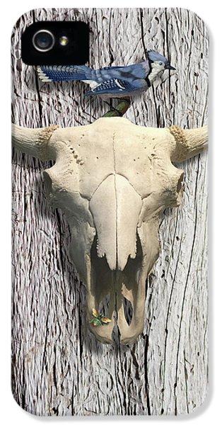 Bluejay iPhone 5s Case - Bluejay And The Buffalo Skull by Gary Grayson
