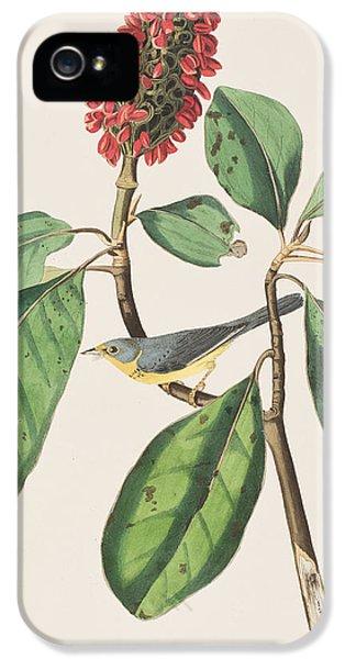 Flycatcher iPhone 5s Case - Bonaparte's Flycatcher by John James Audubon