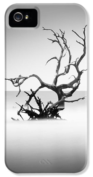 Bull iPhone 5s Case - Boneyard Beach X by Ivo Kerssemakers