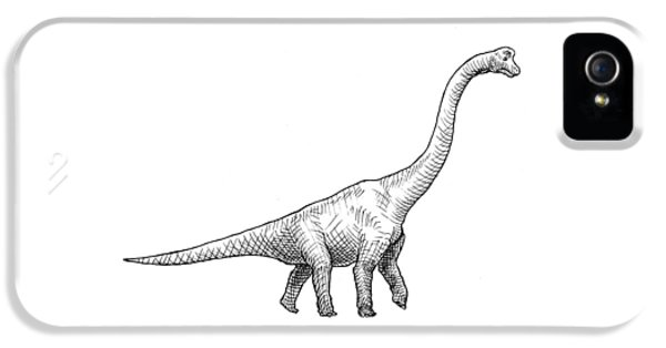 Brachiosaurus Black And White Dinosaur Drawing  IPhone 5s Case