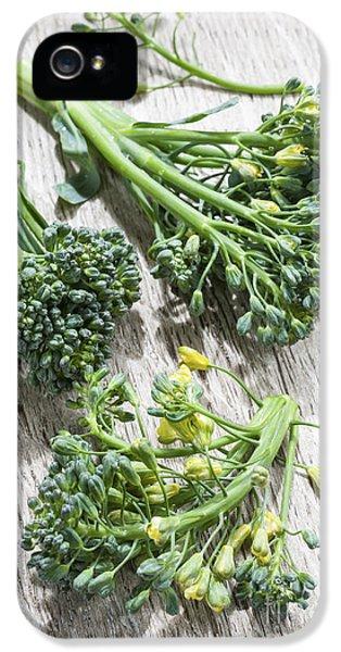 Broccoli iPhone 5s Case - Broccoli Florets by Elena Elisseeva