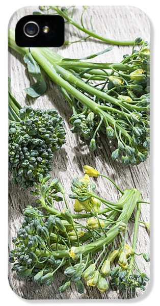 Broccoli Florets IPhone 5s Case by Elena Elisseeva