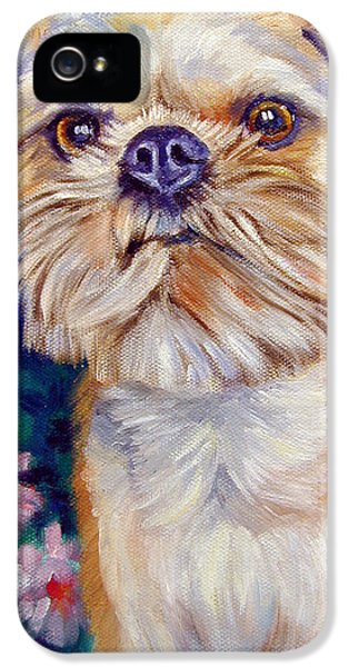 Griffon iPhone 5s Case - Brussels Griffon by Lyn Cook