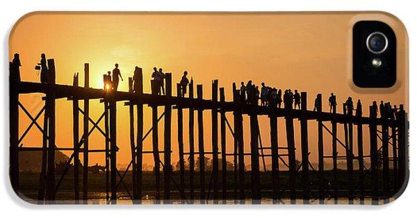 Burmese Python iPhone 5s Case - Burmese Sunset by Delphimages Photo Creations