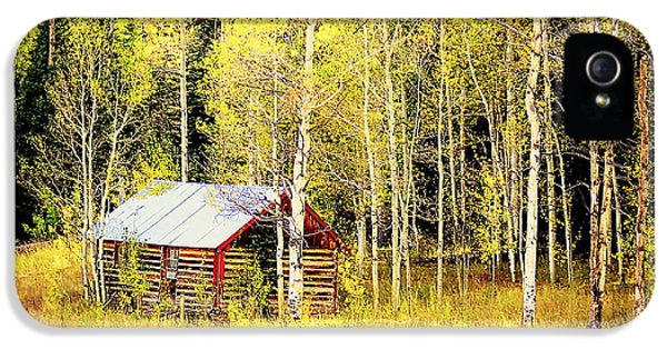Cabin In The Golden Woods IPhone 5s Case by Karen Shackles