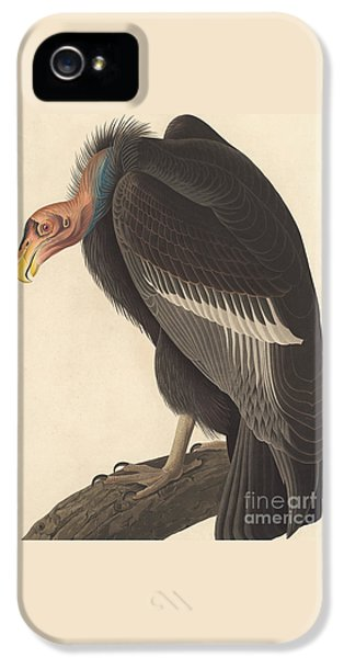Californian Vulture IPhone 5s Case by John James Audubon