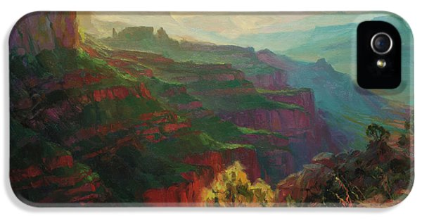 Grand Canyon iPhone 5s Case - Canyon Silhouettes by Steve Henderson
