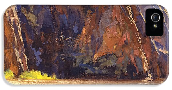 Grand Canyon iPhone 5s Case - Canyon Walls by Cody DeLong