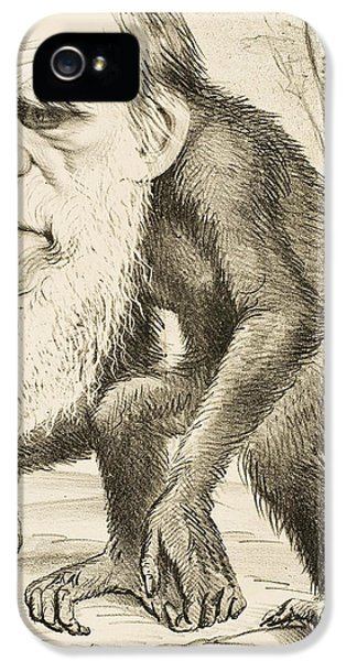 Caricature Of Charles Darwin IPhone 5s Case by English School