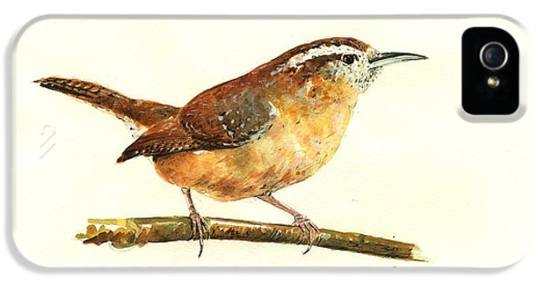 Carolina Wren Watercolor Painting IPhone 5s Case