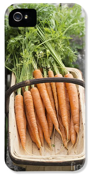 Carrots IPhone 5s Case by Tim Gainey