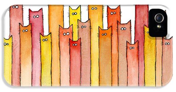 Cat iPhone 5s Case - Cats Autumn Colors by Olga Shvartsur